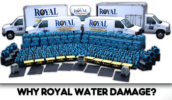 Royal Water Damage Top of The Line!